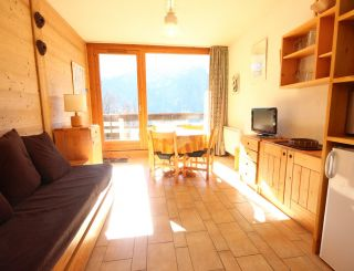 Studio for 4 persons in plan Peisey close to...